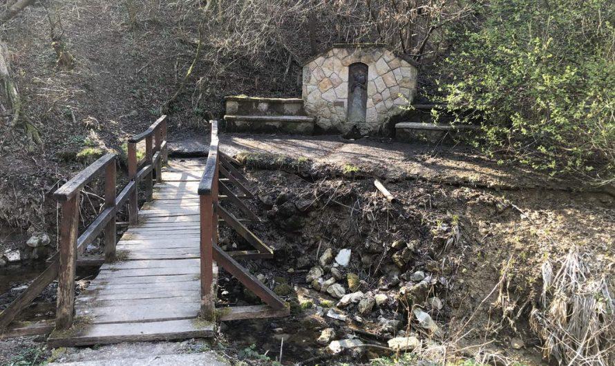 Szénás Kör családi táv 11km