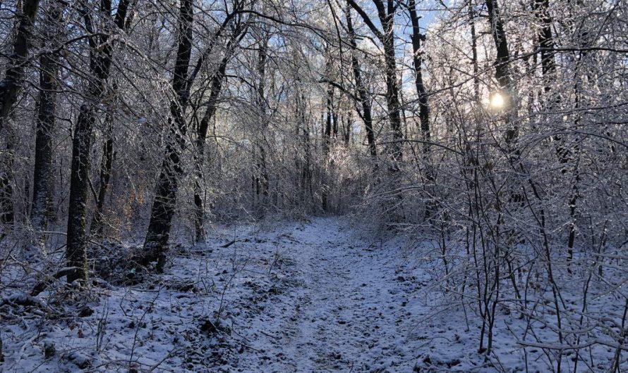 Szénás Kör 31km – Kristályország csodái