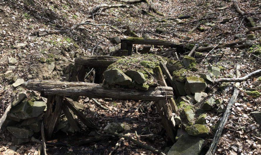 4 Peaks of Börzsöny – Csillogó nemesfémek a Kovács-patak völgyében