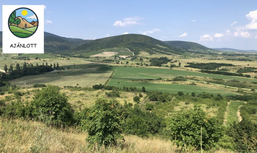 Hegyaljai Borangolás Esszencia – Kalandozások a Zempléni-hegység déli részein